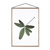 Moebe Poster Floating Leaves 06